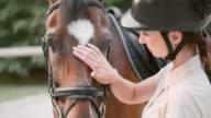 SLO MO Brunette female rider stroking bay horse video