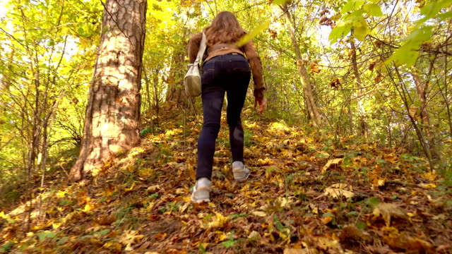 Brunette girl in brown jacket hiking in sunny autumn woods. Climbing uphill. FullHD steadicam video video