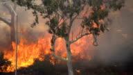 Brush Fire Los Angeles video