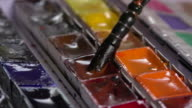 Brush taking watercolor in palette video