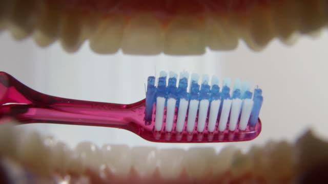 Brushing teeth, mouth POV video