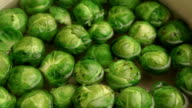 Brussels sprouts boiling video