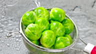 Brussels Sprouts. video