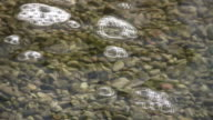 Bubbles are floating on the clear water's surface (High Definition) video