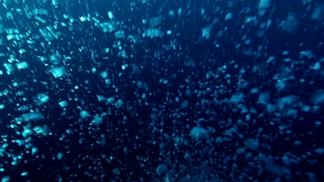 Bubbles moving in the water video
