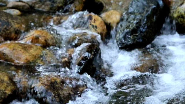 Bubbling Brook video