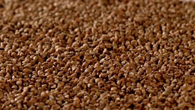 Buckwheat, background, rotation video