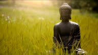 buddha figurine in the middle of green meadow video