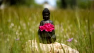 buddha figurine with red flowers in the middle of green meadow video