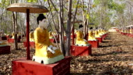 Buddha Meditating Sculptures 2 video