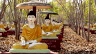 Buddha Meditating Sculptures 3 video