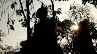 Buddha statue on sunset video