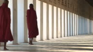 buddhist novices walking video