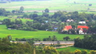 Buddhist Temple and Rice Field video