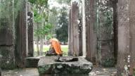 Buddhist view video