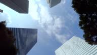 Building - look up at the sky -Shinjyuku-4K- video
