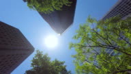 Building with green - look up at the sky -4K- video