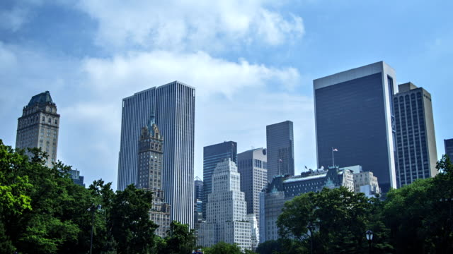 Buildings and trees, Manhattan, New York video