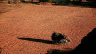 Bull Cart Bagan video