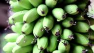 Bunch of green bananas video