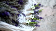 Bunch of lavender in a white basket video