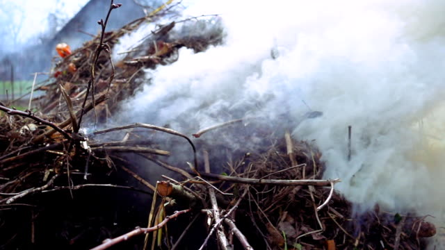 Burning and smoking heap of branches and leaves video