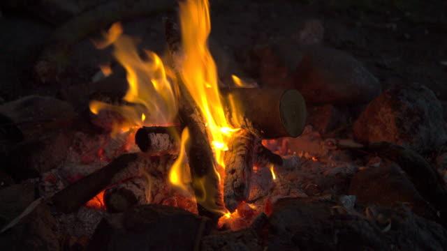 Burning Campfire at the Danish Landside // HQ video