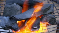 Burning coals on the sieve video