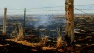 Burning field video