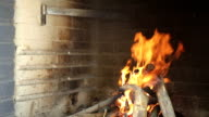 Burning fire in the brazier. video