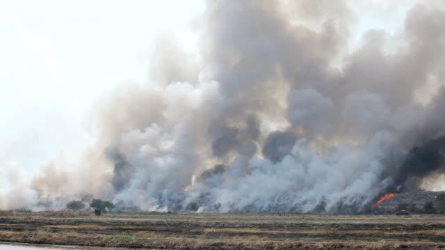 Burning garbage heap of smoke video