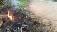 Burning garbage, pollution video