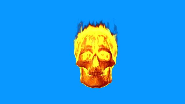 Burning skull on blue screen. video