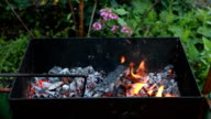 Burning wood in a brazier. Fire, flames. Grill or barbecue video