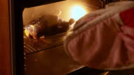 Burnt chicken in oven with smoke being removed video