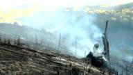 Burnt Field video