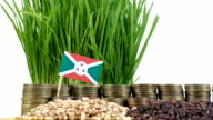 Burundi flag waving with stack of money coins and piles of wheat video