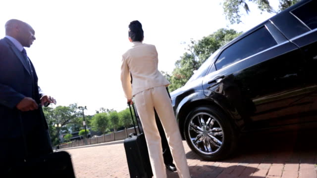 Business Executives Being Met Luxury Transport video