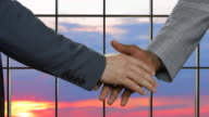 Business handshake on sunset background. video