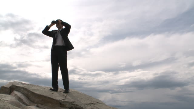 Business man looks to the future atop a mountain video