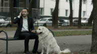 Business man talking by phone, big white dog siting near him video