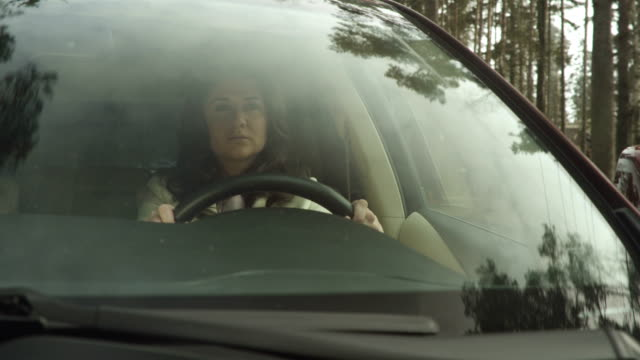 Business Woman Driving A Car video