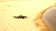 Businessman Crawling in Desert Reaching Water Success Concept video