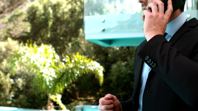 Businessman having a phone call video