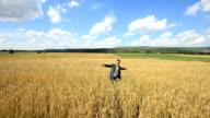 Businessman outside  harvest video