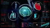 Businessman touching digital screen, Scanning brain, heart, lungs, internal organs video