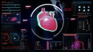 Businessman touching digital screen, scanning heart. Human cardiovascular system. video