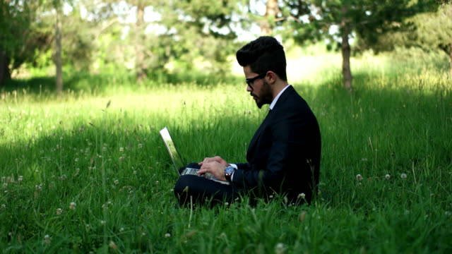 Businessman Working Outdoors video