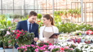 Businesspeople are checking the growing flowers video