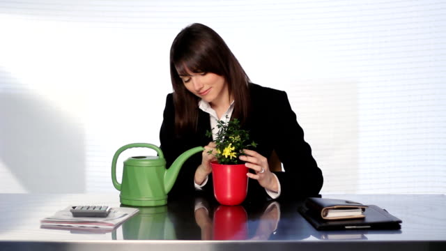 Businesswoman tends to plant. video